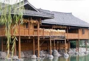 bambou habitat chine