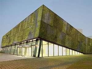 beton-vert