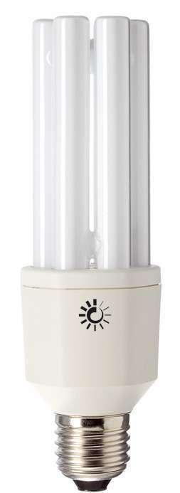 Ampoule Fluocompacte Lumière du jour